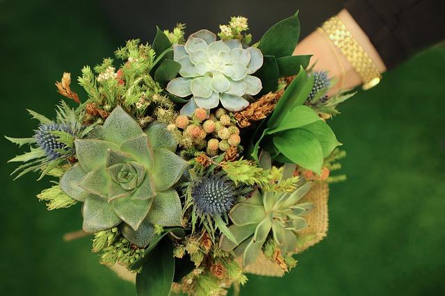 krásná flora