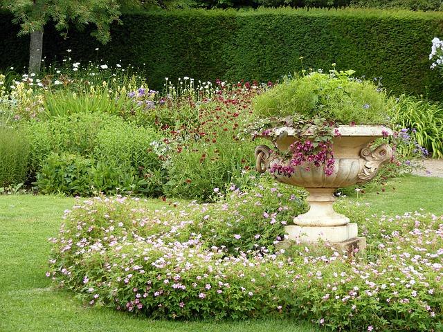 zahrada za domem